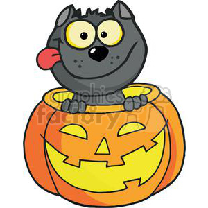 Happy Halloween Pumpkin with a Happy Black cat inside clipart. Royalty-free image # 379445