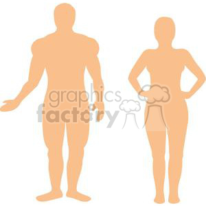 Male and female naked human body animation. Royalty-free animation # 379628