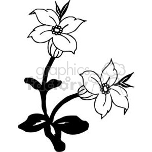 83-flowers-bw clipart. Commercial use image # 380085