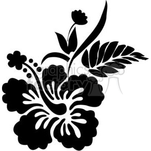 black and white Hawaiian Hibiscus flower clipart. Commercial use image # 380150