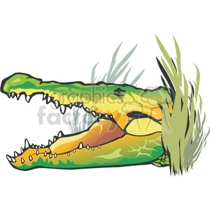 Alligator lurking behind swamp foliage clipart. Royalty-free image # 129775