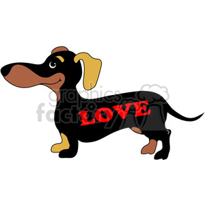 Dachshund with love on its side