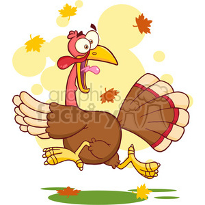 turkey thanksgiving bird running cartoon