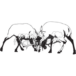black and white Elks fighting clipart. Commercial use image # 394990