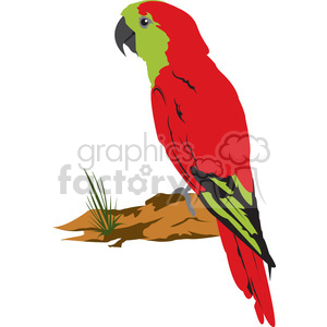 Red Green Parrot Bird clipart. Commercial use image # 394996