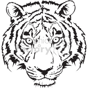 tiger head black and white illustration clipart. Royalty-free image # 398017