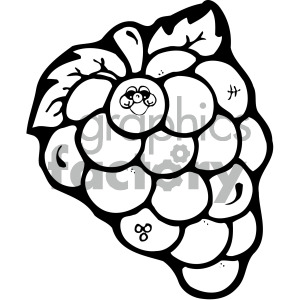 black and white grapes clipart