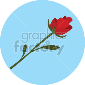 valentines love flower rose