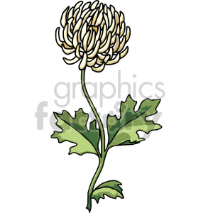 dandelion clipart. Commercial use image # 151113