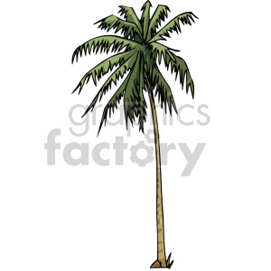 palm tree clipart. Royalty-free icon # 151139