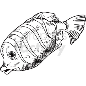 black white realistic fish clipart clipart. Commercial use image # 411445