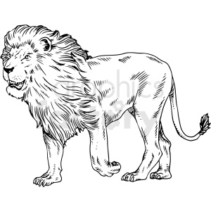 black and white lion vector clipart clipart. Commercial use image # 411468