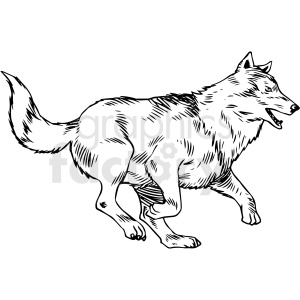 black and white wolf running vector clipart