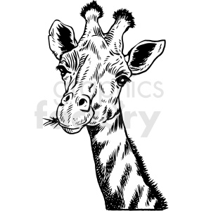 realistic giraffe vector clipart clipart. Royalty-free image # 413223