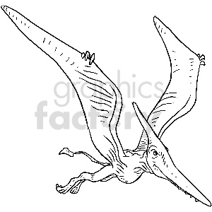 black and white pterodactyl vector clipart clipart. Royalty-free image # 413391