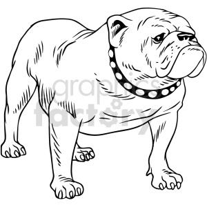animals bulldog dog black+white