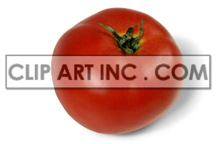 Tomato photo. Royalty-free photo # 176929