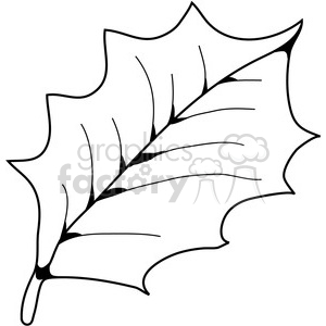 American Holly Leaf clipart. Royalty-free image # 387340