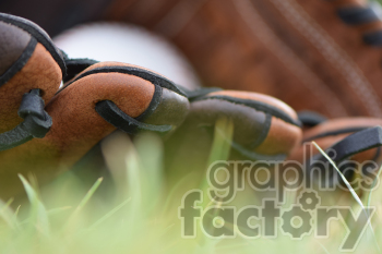 baseball glove in grass close up