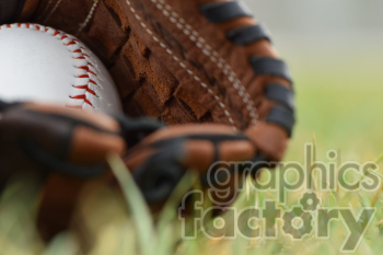 baseball glove in grass photo. Commercial use photo # 391042