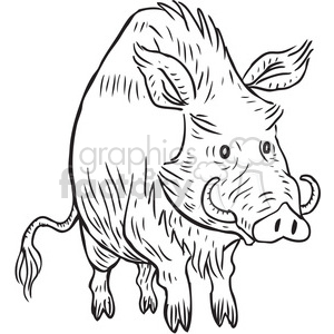 warthog clipart. Commercial use image # 397084
