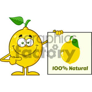 Royalty Free RF Clipart Illustration Smiling Yellow Lemon Fresh Fruit With Green Leaf Cartoon Mascot Character Pointing To A 100 Percent Natural Sign Vector Illustration Isolated On White Background clipart. Royalty-free image # 404334