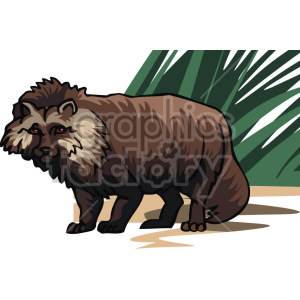 raccoon  clipart. Royalty-free image # 129314