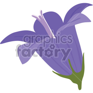 Bellflower flower clipart. Royalty-free image # 408053