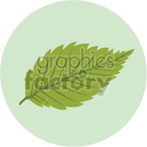 birch leaf on green circle background clipart. Royalty-free image # 408077