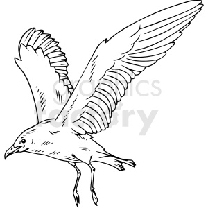 black and white seagull vector clipart