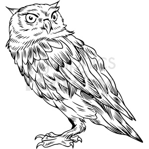 black and white owl vector illustration clipart. Commercial use image # 412593