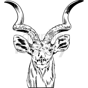 black and white kudu bull vector clipart clipart. Commercial use image # 412711