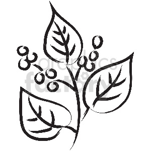 black and white tattoo twig berries vector clipart clipart. Royalty-free image # 413316