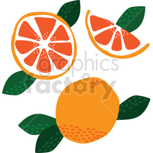 grapefruit vector graphic clipart. Commercial use image # 415101