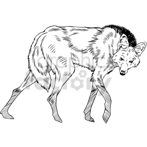 clipart - black and white hyena vector graphic.