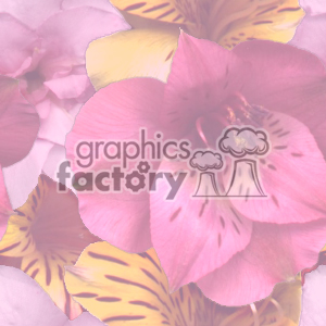 faded floral background