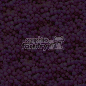 092106-grapes light-001 clipart. Royalty-free image # 371708