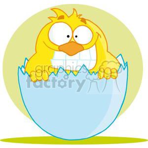 Happy Baby Chick clipart. Royalty-free image # 378365