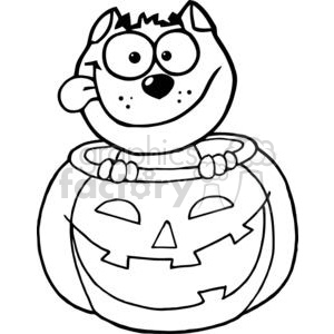Cartoon Character Halloween Black Cat Sitting Inside Of A Pumpkin clipart. Commercial use image # 379457