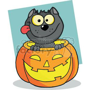 Cartoon Character Halloween Black Cat Sitting Inside Of A Pumpkin clipart. Royalty-free image # 379577