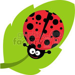Ladybug on leaf clipart. Commercial use image # 379657