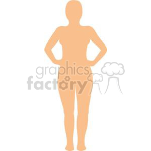 female naked body