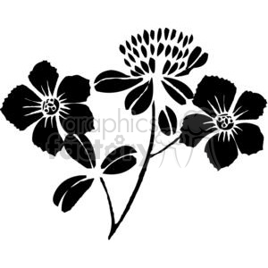 50-flowers-bw clipart. Commercial use image # 380114