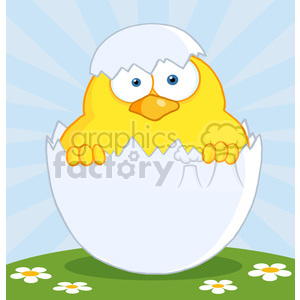 4748-Royalty-Free-RF-Copyright-Safe-Surprise-Yellow-Chick-Peeking-Out-Of-An-Egg-Shell clipart. Royalty-free image # 384534