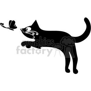 black cats white animals feline kitten pet butterfly chasing