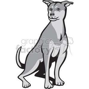 husky shar pei dog SITTING clipart. Royalty-free image # 394420