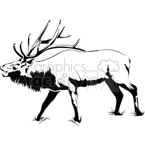 black and white Elk roaring side profile clipart. Commercial use image # 394988
