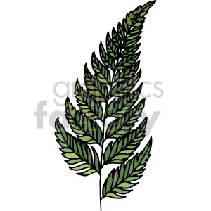 fern leaf clipart. Commercial use image # 151119