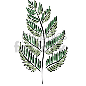 fern leaf clipart. Commercial use image # 151163