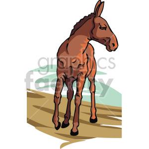 donkey clipart. Royalty-free image # 129304